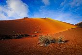Colorful landscape in Timanfaya National Park