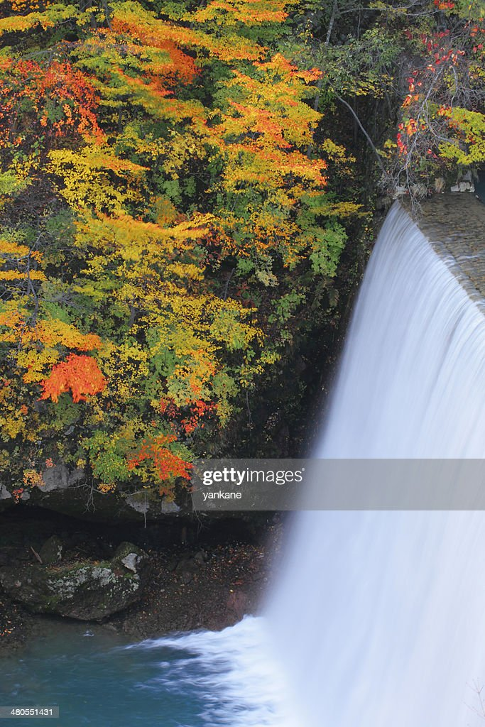 colorful  leaves in Gully  Matsukawa : Stock Photo