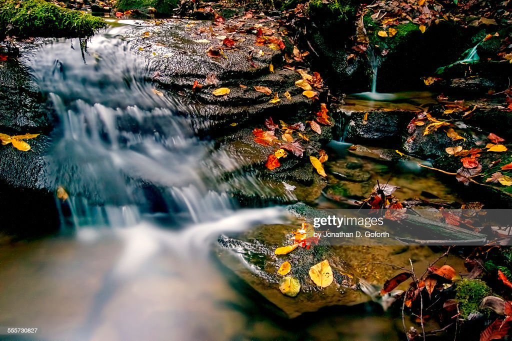 Colorful Nature's Flow