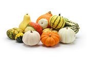 colorful pumpkin and squash collection, autumn background