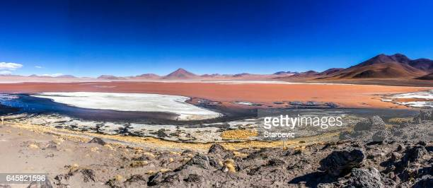 Colorful red lagoon at the Salar de Uyuni in Bolivia
