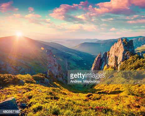 Colorful summer sunrise in the Carpathian mountains : Stock Photo