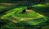 Colorful Vietnam