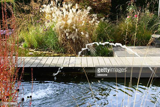 Colorful water garden with fountain and dock