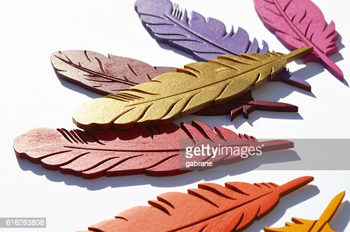 Colorful wood feathers : Stock Photo
