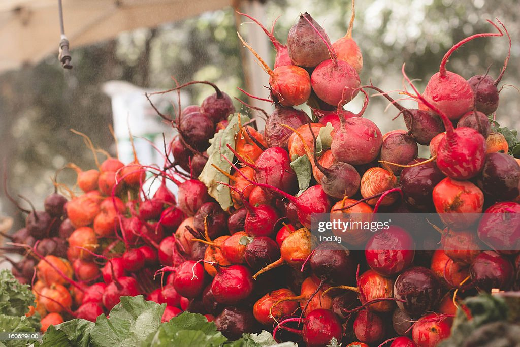 Colors of fall at the farmer's market : Stock Photo