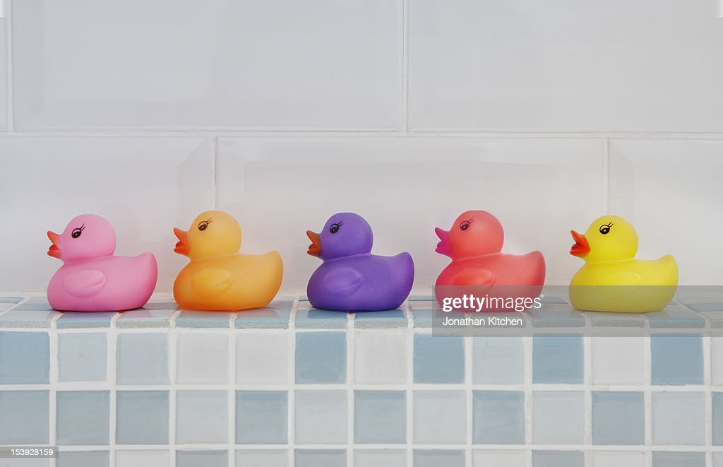 Coloured Rubber Ducks : Stock Photo