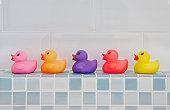 Coloured Rubber Ducks