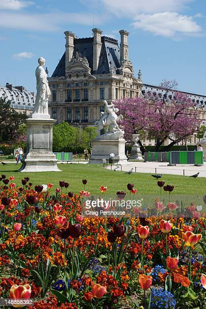 Colourful flower garden and statues in Jardin de Tuileries before Royal Palace.
