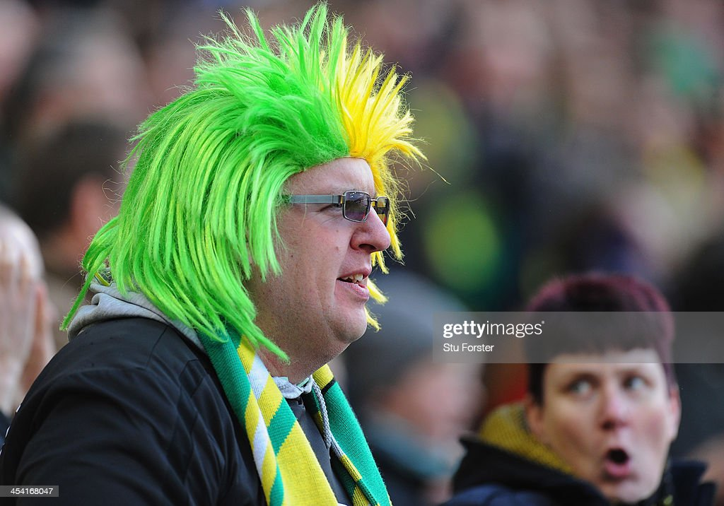 A colourful Norwich fan looks on the Barclays Premier League match between West Bromwich Albion and Norwich City at The Hawthorns on December 7, 2013 in West Bromwich, England.