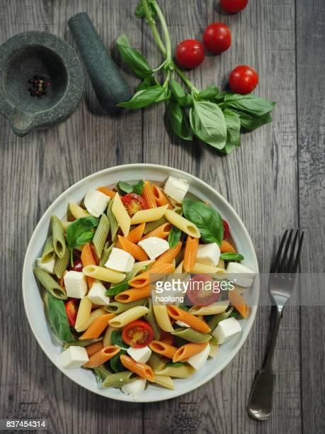 Bunte Penne Pasta-Salat mit Mozzarella-Käse