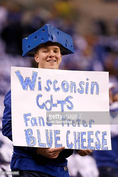 Colts fan prefers blue cheese during the AFC WildCard football game between the Cincinnati Bengals vs Indianapolis Colts at Lucas Oil Stadium in...