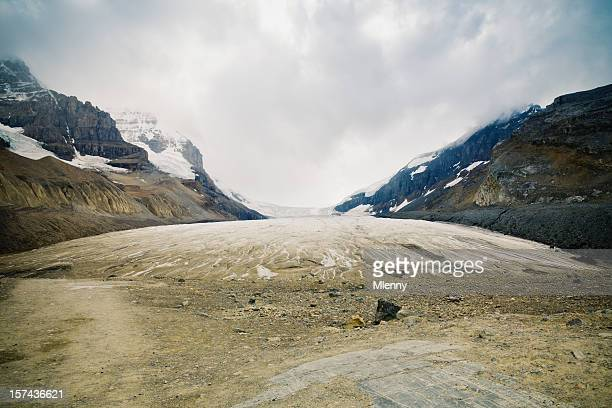 Columbia champ de glace de Canadian Rockies