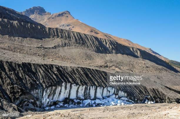 Columbia Ice fields Glacier, Alberta, Canada.