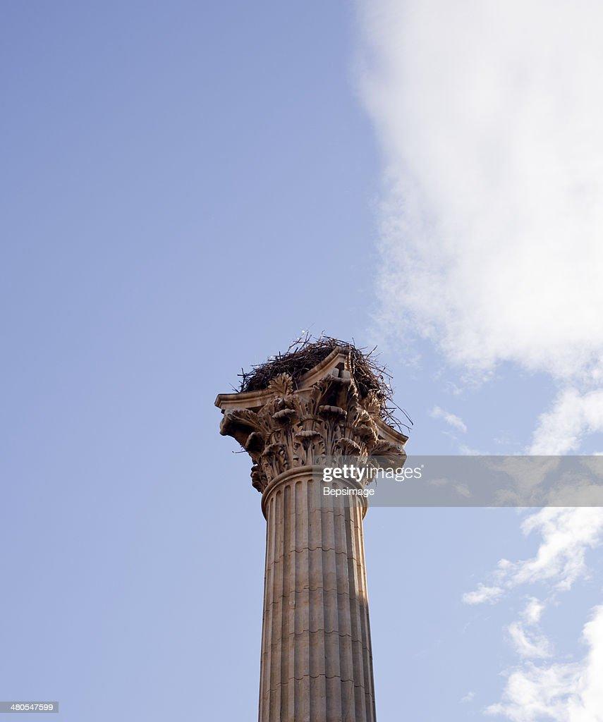 Spalte, Leon : Stock-Foto