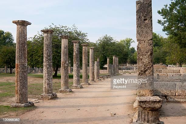 Columna de árboles street en Olympia