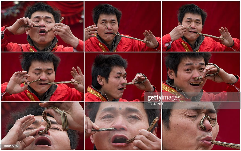 A combination of pictures made on February 13, 2013 shows a performer as he passes a snake through his nose and mouth during a show at a fair as part of lunar new year festivities at the Temple of Earth park in Beijing on February 11, 2013. A billion-plus Asians are ushering in the lunar Year of the Snake with a week of festivities. AFP PHOTO / Ed Jones