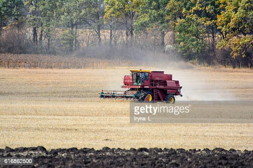 Combine harvest on the field. Grain harvesting combine. : Stock Photo