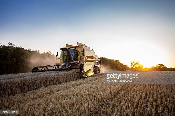 Combine harvester at sunset