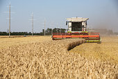 A combine harvester manufactured by Claas KGaA drives through a field of wheat during the summer harvest on a farm operated by Kuban Agroholding a...
