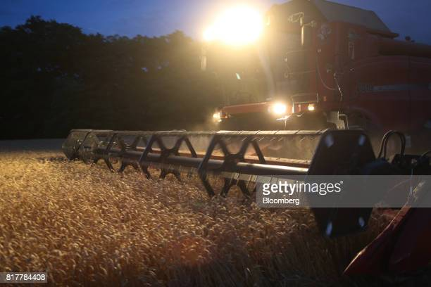 A combine harvester operates as night falls during the summer wheat harvest on a farm operated by ASB Management Co in Novoalexandrovsk Russia on...