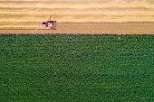 Top view of combine harvester working in golden wheat field. Harvesting season in agricultural works