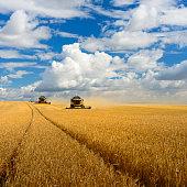 Combine Harvesters