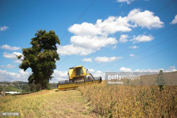 A combine machine harvests soybeans at the Santa Cruz farm near Atibaia Brazil on Wednesday March 29 2017 Brazil is world's biggest soybean exporter...