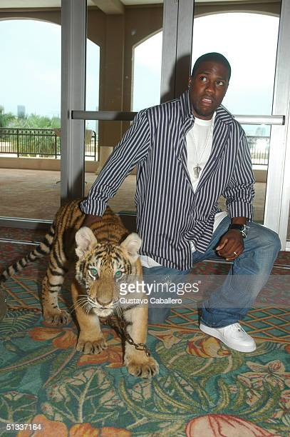 Comedian Kevin Hart plays with a baby tiger at the Source Magazine and City of Miami Press conference at Parrot Jungle to announce details of the...