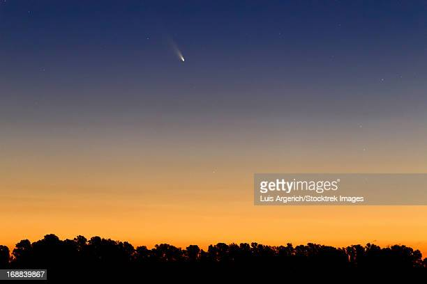 Comet Panstarrs at twilight, visible with the naked eye, Buenos Aires, Argentina.