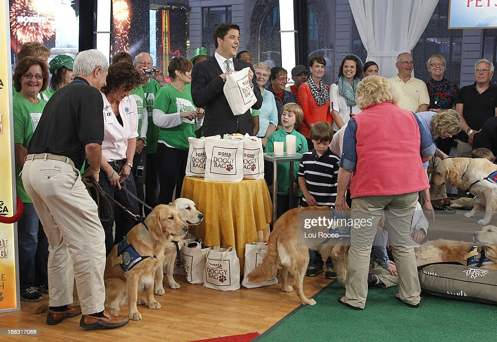 Comfort Dogs Surprised guests on 'Good Morning America,' 5/8/13, airing on the ABC Television Network. (Photo by Lou Rocco/ABC via Getty Images) AUDIENCE, JOSH