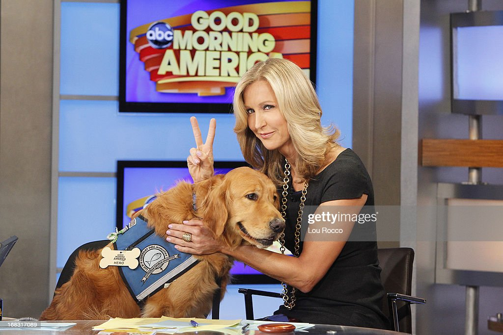 Comfort Dogs Surprised guests on 'Good Morning America,' 5/8/13, airing on the ABC Television Network. (Photo by Lou Rocco/ABC via Getty Images) DOG, LARA