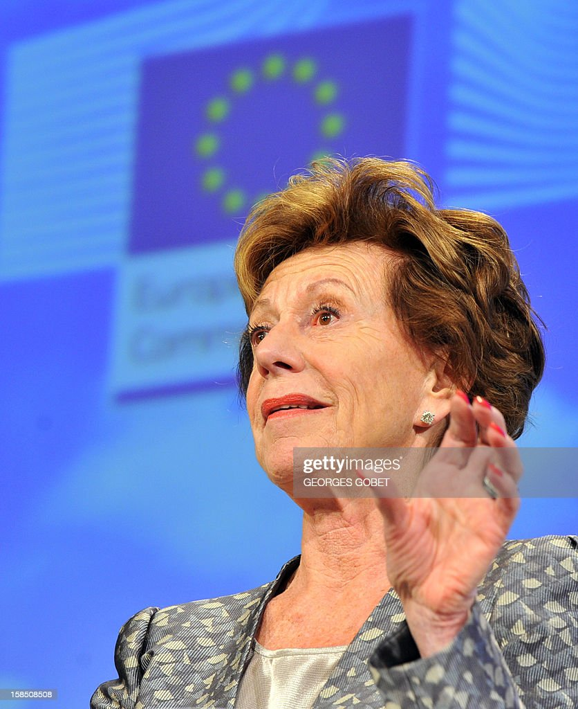 EU commissioner in charge of new technologies Neelie Kroes presents the European Commission's digital priorities for 2013 on December 18, 2012 at the EU Headquarters in Brussels. AFP PHOTO / GEORGES GOBET