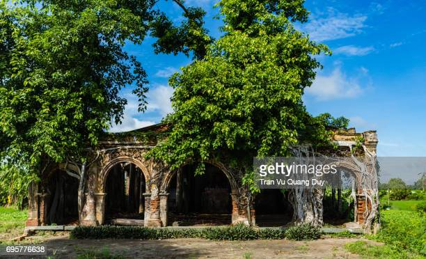 Communal house in the village, an ancient temple called Go Tao in Tan Dong, Go Cong, Tien Giang Province, built in 1907. The ancient temple with banyan tree is the symbol of rural village in Vietnam.