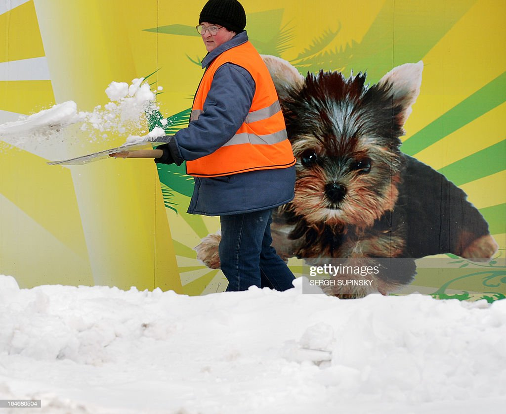 A communal worker clears snow in front of a pet shop window in downtown Kiev on March 26, 2013. Police and the military were commandeered to help communal services to clear Kiev streets after record-breaking snow that blanketed the capital and other parts of the country over the weekend. AFP PHOTO/ SERGEI SUPINSKY