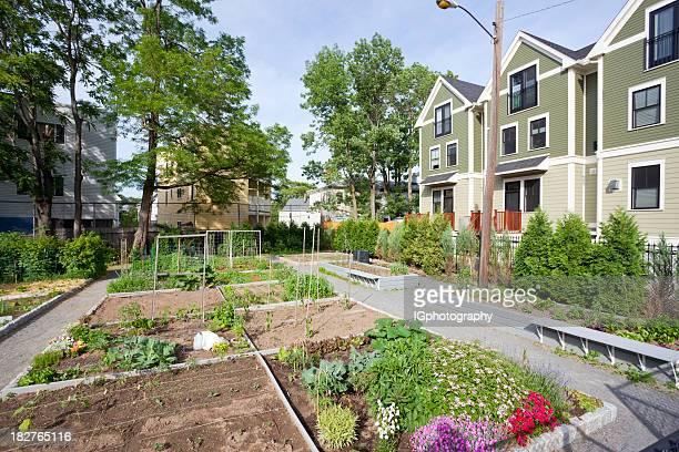 Jardim Comunitário com flores e produtos hortícolas