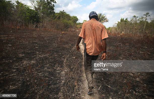 Community leader Luiz Lopes walks while giving a tour of deforestation near homes in the Imbiral quilombo which community members say is being...