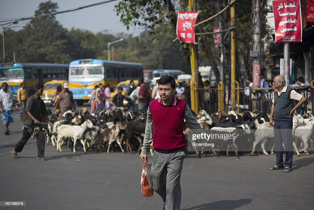 A commuter walks in front of a herd of goats in Kolkata, India, on Tuesday, Feb. 19, 2013. India's slowest economic expansion in a decade is limiting profit growth at the biggest companies even as foreigners remain net buyers of the nation's stocks, according to Kotak Institutional Equities. Photographer: Brent Lewin/Bloomberg via Getty Images