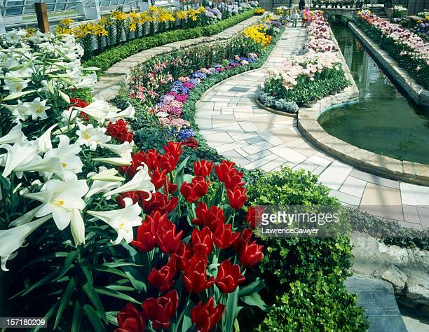 Como Park Conservatory, St. Paul, MN