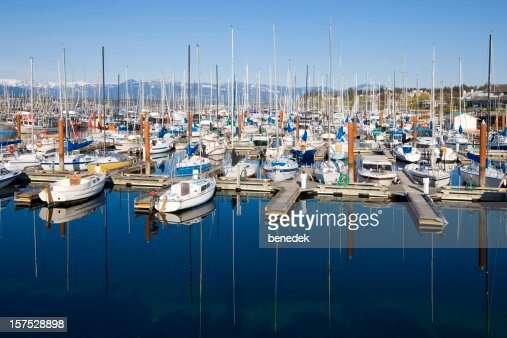 Comox Harbor Vancouver Island