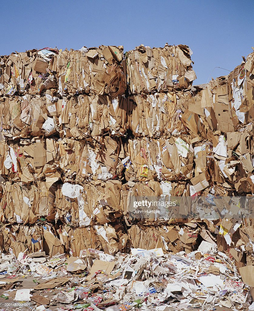 Compacted piles of cardboard at recycling plant : Stock Photo