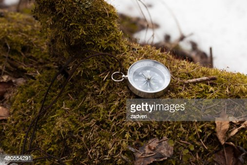 compass in winter forest : Stock Photo