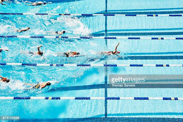 Competitive swimmers following female swimmer