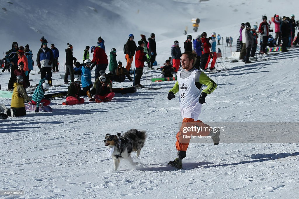 A competitor and dog race in the snow during the DB Export Dog Derby at the Remarkables ski field on June 30, 2016 in Queenstown, New Zealand.