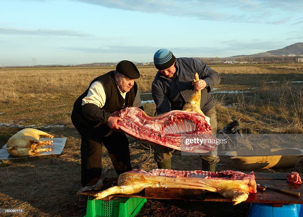 Competitors holds an half pig during the Pigs Carvers Festival in the Transcarpathian village of Gecha, some 800 km from the capital Kiev on January 26, 2013. Some 26 teams of butchers from Ukraine, Hungary and Serbia, the countries who cultivate pig-breeding, took part in this traditional competition. Each team has to kill a pig, butcher the carcass and prepare a variety of dishes made from the pork.
