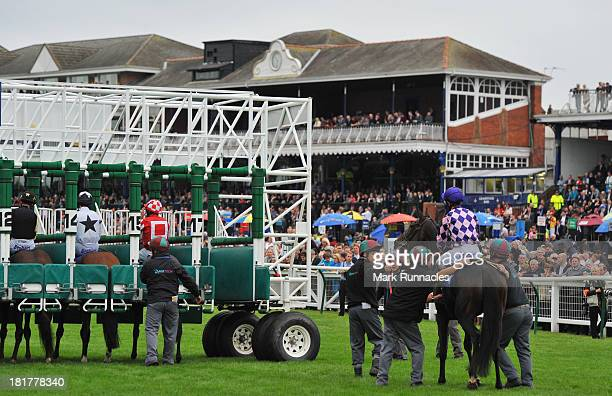 Competitors in The Jordan Electrics Ltd Handicap Stakes preparing to start the race in front of the main stand at Ayr racecourse on September 21 2013...