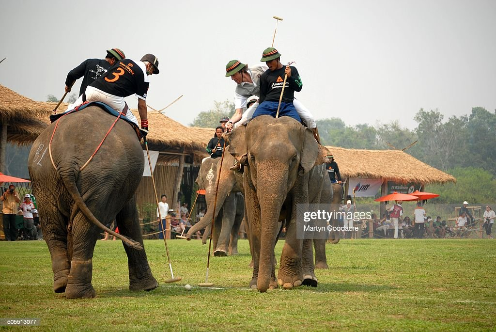 Competitors in the King's Cup Elephant Polo tournament at Chiang Rai in northern Thailand, 2010.