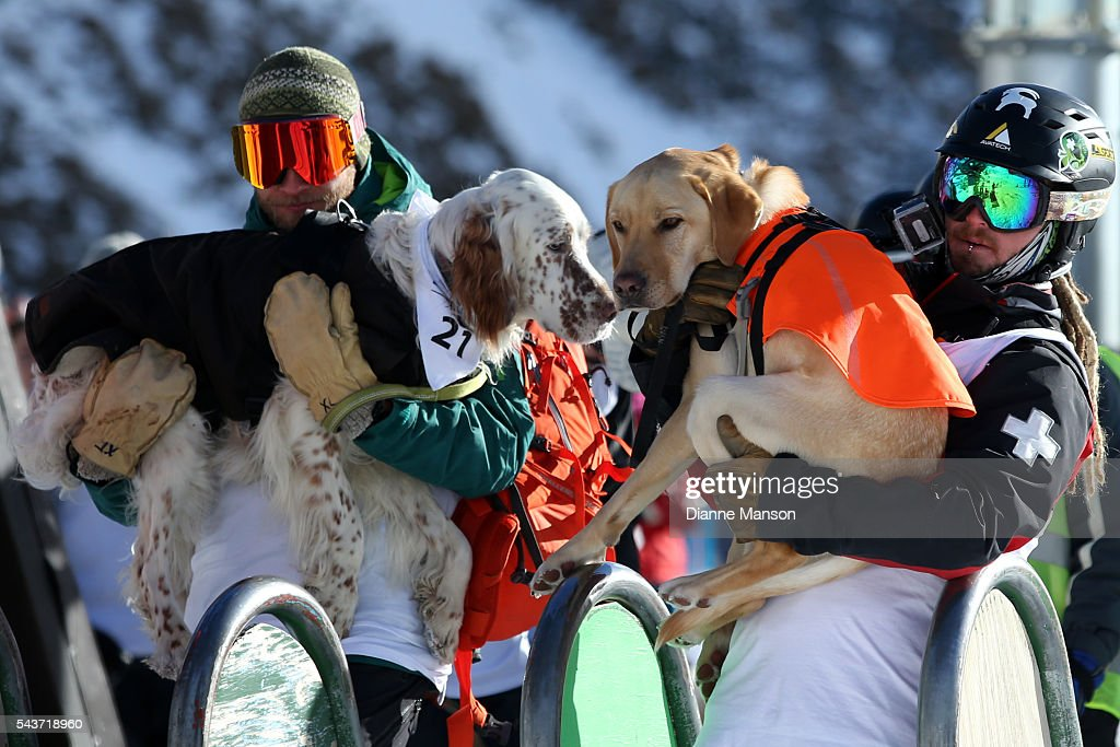 Competitors queue to ride the chair lift to the start line during the DB Export Dog Derby at the Remarkables ski field on June 30, 2016 in Queenstown, New Zealand.
