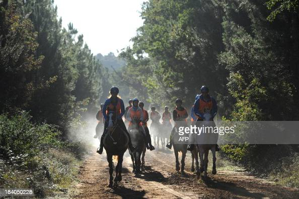 Competitors ride their horses on October 11 2013 in Uzes southern France during the French national equestrian endurance championships AFP PHOTO /...