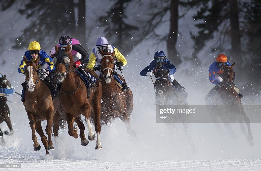 PEDRERO - Competitors take part in the White Turf horse racing event in St. Moritz on February 3 , 2013. The races are held on the frozen lake of the Swiss mountain resort.